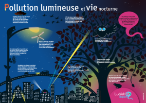 Poster La pollution lumineuse